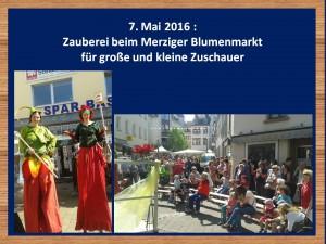 Zauberer-Merzig-Blumenmarkt